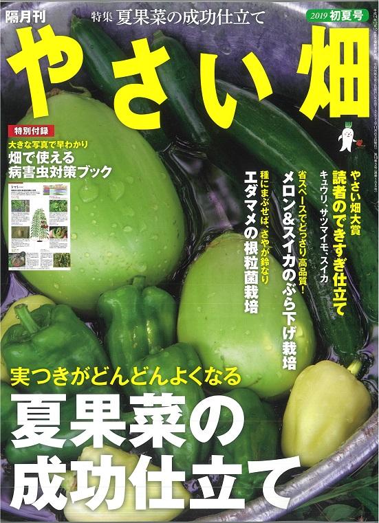 やさい畑初夏号 5月1日発行