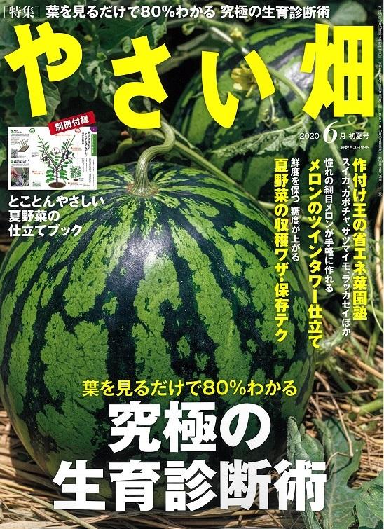 やさい畑初夏号 5月3日発行